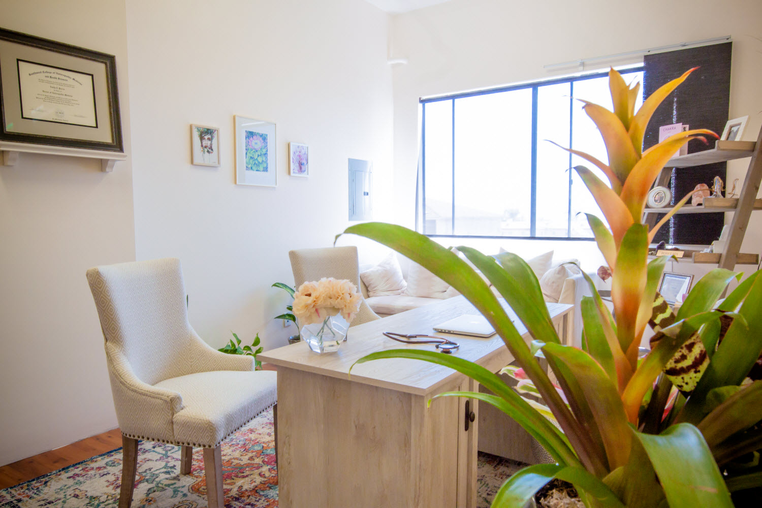 La Jolla San Diego Wellness Detox Center